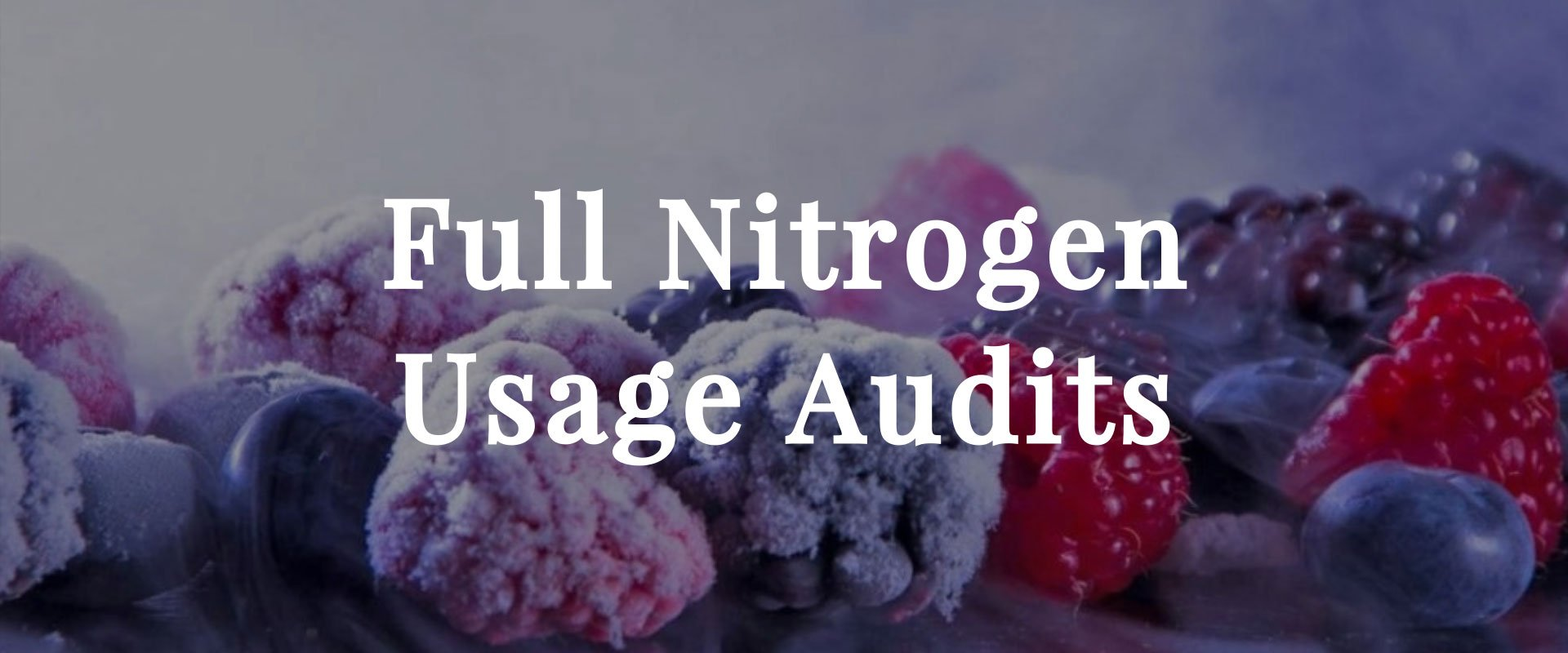 full nitrogen usage audits
